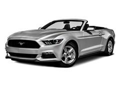 Mustang hatchback GT Premium V8 MT