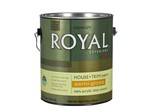 Ace-Royal Exteriors by Ace Semi-Gloss-Paint-image