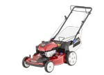 Toro-20339-Lawn mower & tractor-image