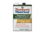 WaterSeal Waterproofer Plus Clear Wood Protector) thumbnail