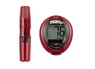 Blood Glucose Monitoring System) thumbnail