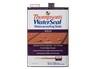 WaterSeal Waterproofing Solid (Home Depot)) thumbnail